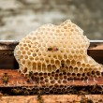Beehive — Stock Photo #12772803