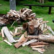 Cut log firewood and old axe — Foto de Stock