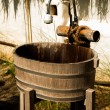 Washbasin wood — Stockfoto