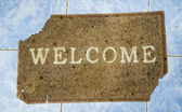The Ruin Doormat of welcome text on floor background — Stock Photo