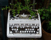 Old typewriter with flower — Stok fotoğraf