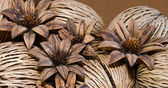 Pinecone flower — Stockfoto