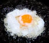 The Freid egg — Stock Photo