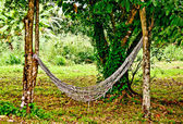 The Old hammock hang between trees in the forest — Stock Photo