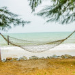 Hammock hanging on tree on beach - Stock Photo