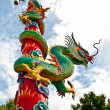 The Dragon pole — Stock Photo