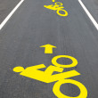The Bicycle road sign painted on the pavement — Stock Photo #22141235