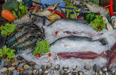Raw seafood on ice — Stock Photo