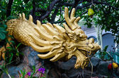 Dragon status under cashew nut tree — Foto de Stock