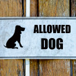 Sign of welcome dog — Stock Photo