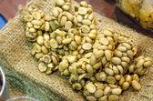 Coffee beans - Civet coffee - Kopi Luwak — Stock Photo