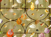 Curtains of Sea shells — Stock Photo