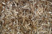Peixe seco no mercado — Foto Stock