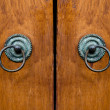Old door knocker — Stock Photo #29513961
