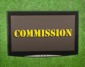 Lcd screen on artificial green grass of commission — Stock Photo