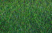 Artificial green grass background — Stock Photo