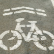 Bicycle road sign painted on the pavement — Stock Photo #42735163