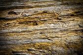 Wood Cracks Texture Background — Stock Photo