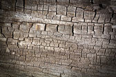 Wood Cracked Texture Background — Stock Photo