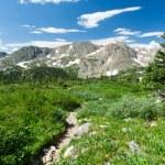 Hiking Trail Through Colorado Mountain Landscape — Stock Photo #19912579