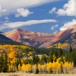 Colorado Mountain Landscape with Fall Aspens — Stock Photo