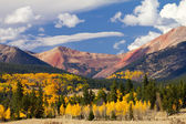Colorado Mountain Landscape with Fall Aspens — Foto Stock