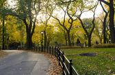 Cetral Park in Fall - New York City — Stock Photo
