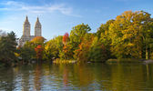 Fall Leaves in Central Park New York City — Stock Photo