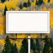 Blank Billboard Sign with  Fall Aspen Tree Forest — Stock Photo