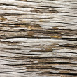 Old Cracked Wood Texture — Stock Photo
