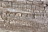 Eski ahşap doku arka plan kırık — Stok fotoğraf