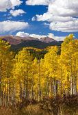 Colorado klippiga bergen faller landskap — Stockfoto