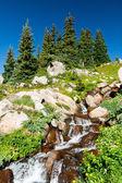 科罗拉多瀑布和野花景观 — 图库照片