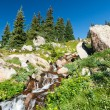 Colorado Waterfall and Wildflowers Landscape Scene — Stock Photo #37145537