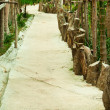 Pathway - 