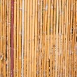Bamboo wall. — Stock Photo #15224565