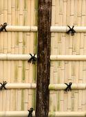 Bamboo walls. — Stock Photo