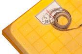 Weighting scales — Stock Photo