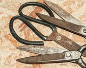 Leather Scissors — Stock Photo
