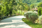 In the garden walk path — Stock Photo