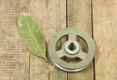 Old metal pulley with haggard  — Photo