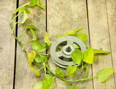 Old metal pulley  — Photo