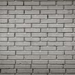 Stock Photo: Brick wall in black and white processed
