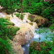 Stock Photo: Limestone waterfall in tropical forest