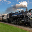 Steam train — Stock Photo #12861532