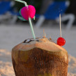 Coconut with drinking straw — Stock Photo