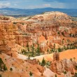 Hoodoos in Bryce Amphitheater, Bryce Canyon National Park, Utah — Stock Photo
