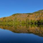 Lake Reflections — Stock Photo #33614299