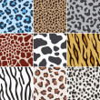 Seamless animal skin fabric pattern texture — Stock Vector #13845190