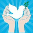 Peace sign of human hands holding dove - Image vectorielle